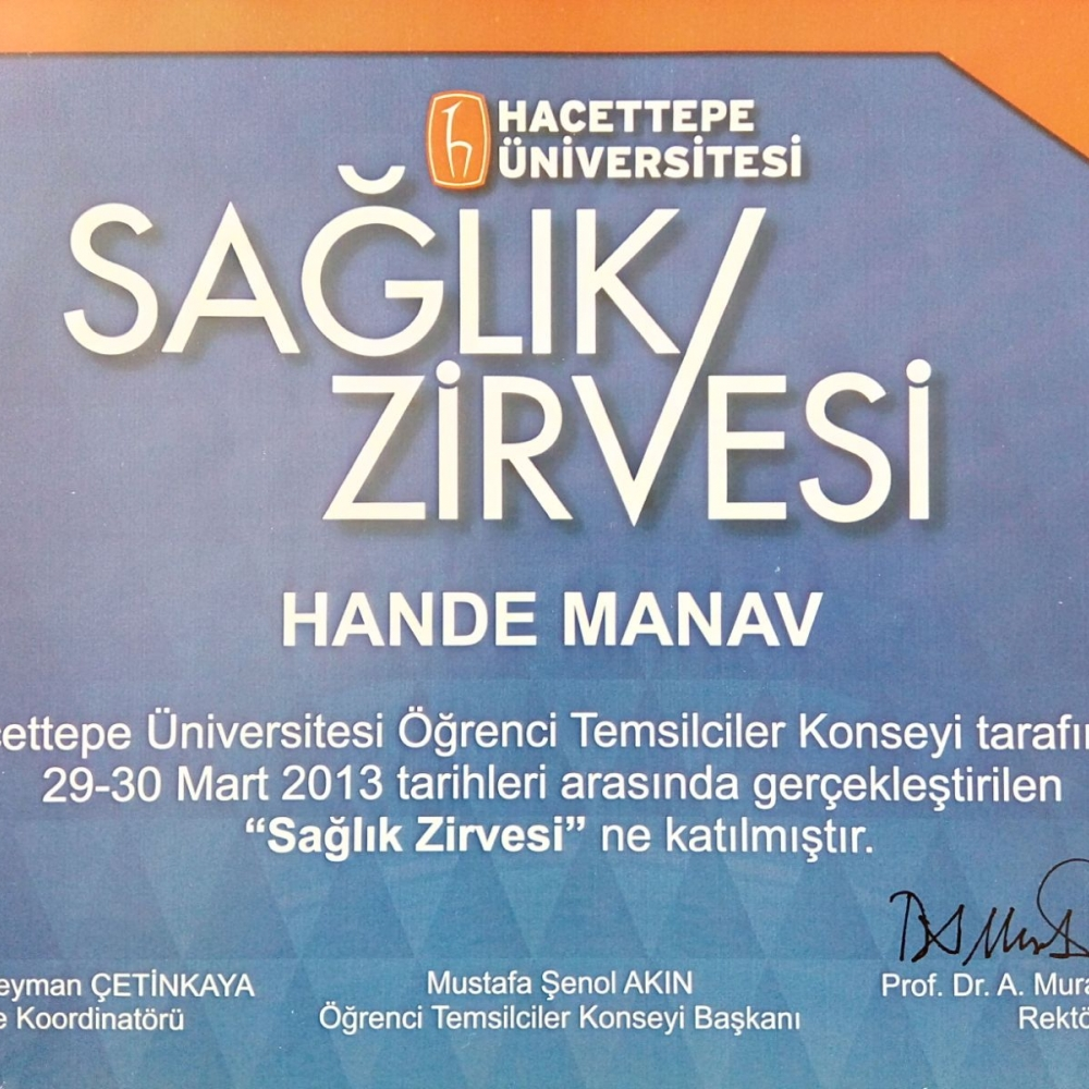 Hande Manav